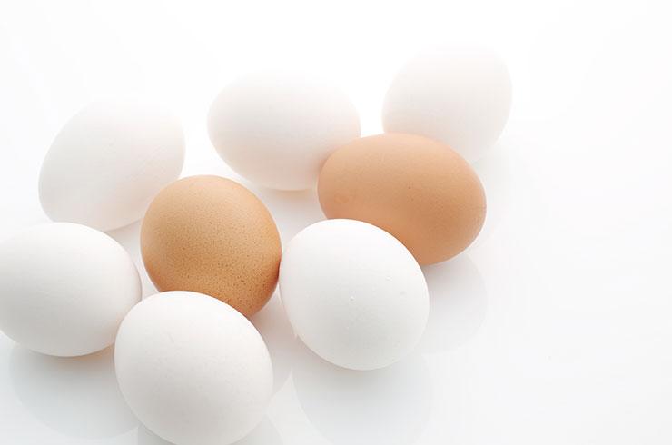 6月輸入 鶏肉5万トン台に増加 粉卵は増加、凍結卵減少