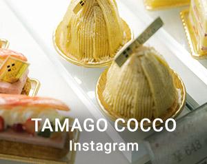 TAMAGO COCCO instagram