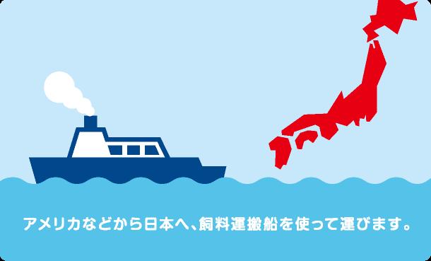 アメリカなどから日本へ、飼料運搬船を使って運びます。