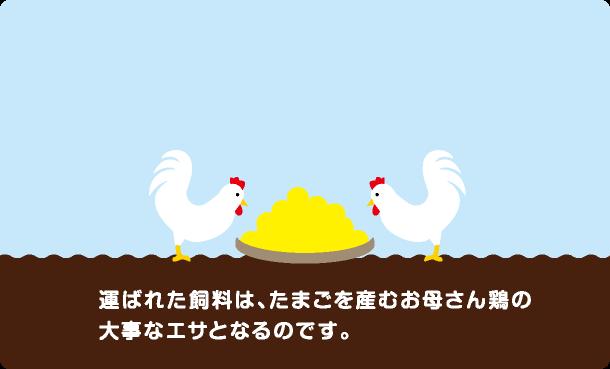 前検査を人の目で行い、ヒビや汚れの残った卵を取り除きます。