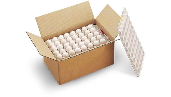 業務用たまご 10㎏箱・5㎏箱