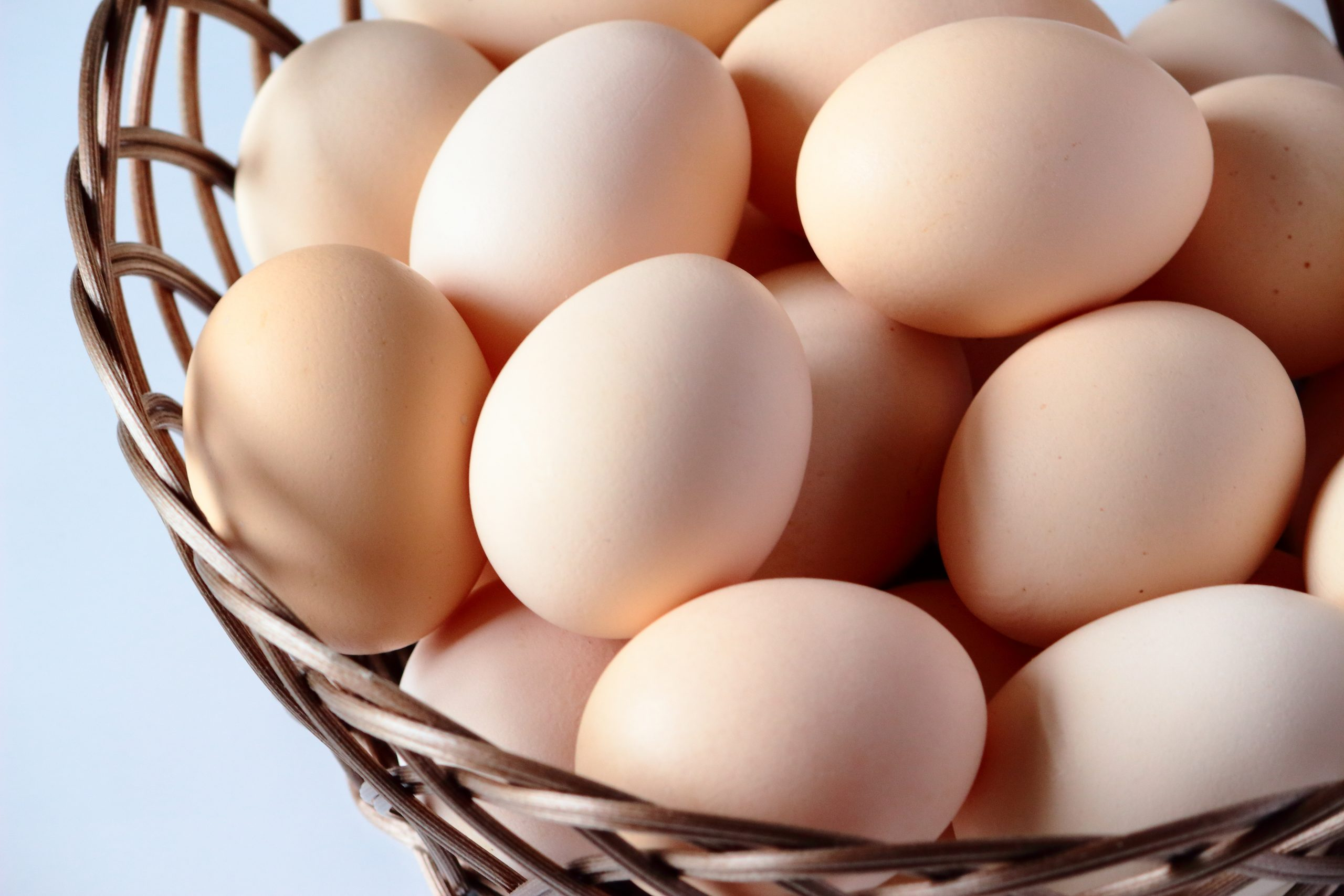 スーパーで売っているのは有精卵?無精卵?